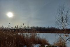 Sonne überm Cospudener See