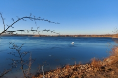Kulkwitzer See - Nordufer